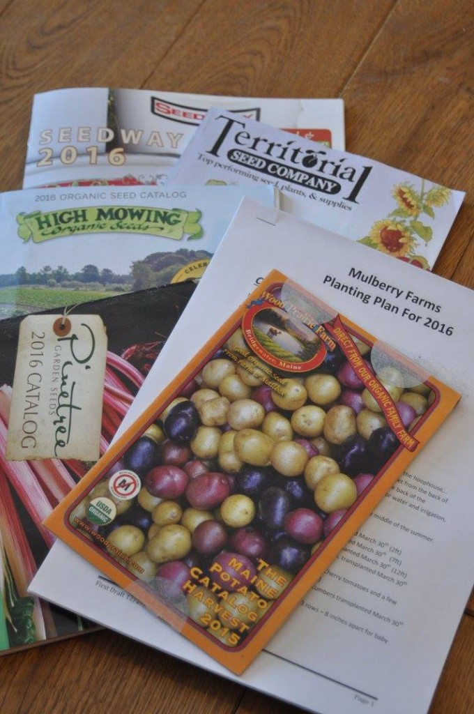 Catalogs of organic seeds and Farmer Frank's detailed plans for the hoophouses and field plantings.