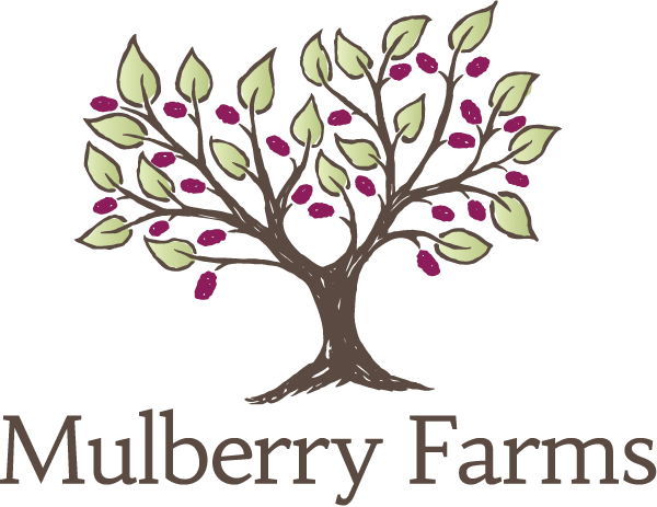 Mulberry Farms Maine